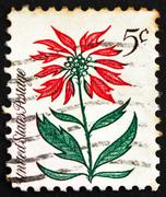 Postage stamp USA 1964 Poinsettia, Christmas Star - stock photo