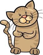 brown tabby kitten - stock illustration
