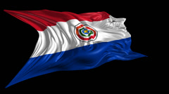 Flag of Paraguay Stock Footage