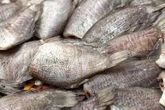 Salted gourami fish at asian market Stock Photos