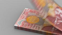 Counting New Zealand Dollar Stock Footage