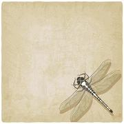 dragonfly insect old background - stock illustration