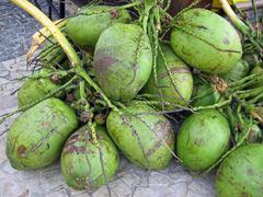 Brazilian coconuts agua de coco Stock Photos