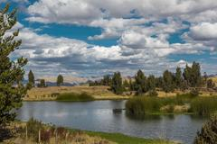 Stock Photo of wayllarqocha wetland cuzco peru