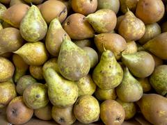 Pears in bulk - stock photo