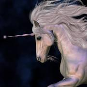 Unicorn stallion Stock Illustration