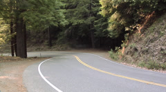 Road going through the Forest Oregon Stock Footage