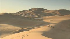 Camels being led over a sand dune in the desert Stock Footage