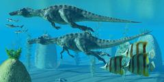 suchomimus dive - stock illustration