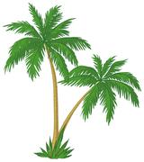 Palm trees - stock illustration