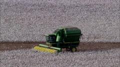 Dallas Texas Farmers - stock footage