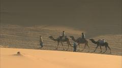 Camels trekking across the desert Stock Footage
