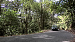 Road through the El Yunque National Forest Stock Footage