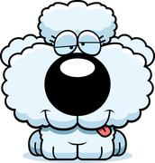 cartoon goofy poodle - stock illustration