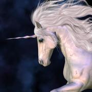 Stallion Stock Illustration