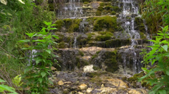 Jungle waterfall exotic Stock Footage