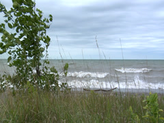 Waves rolling up on a grassy shore during a storm- wide-slo mo 06 Stock Footage