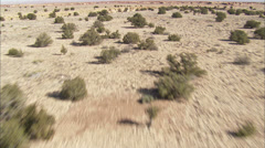 Desert Shrubs Canyons Stock Footage
