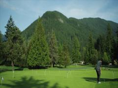 Red Epic - Oregon Golf at putting green Stock Footage
