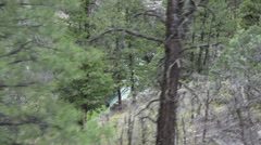 Colorado forest Rocky Mountains from moving vintage steam train HD 168 Stock Footage