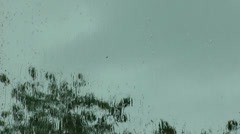 Rain water falling on a wet sodden window with a tree out side moving in the win Stock Footage