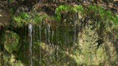 4K Water Drips Off Ledge Closeup 4368 Arkistovideo
