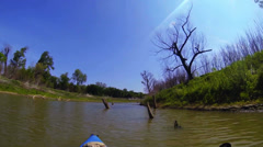 Kayaking POV past sunken stumps III Stock Footage