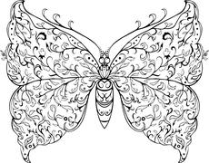 Floral butterfly Stock Illustration