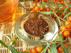 Rooibos tea with fruits of sea buckthorn Stock Photos