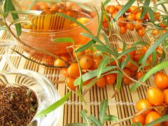 Rooibos tea with fruits of sea buckthorn - stock photo