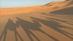 Shadows of camels trekking across the desert, shot in the Morrocan Sahara - stock footage