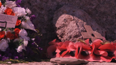 War memorial poppies Stock Footage