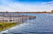 Stock Photo of flooded old wooden fence.