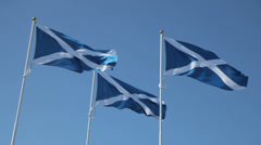 Three Scottish Saltires blowing in the Wind Stock Footage