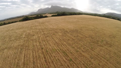 Beautiful Fields of Gold - Aerial Flight, Mallorca Stock Footage