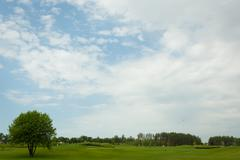 lush fairway in the foreground contrast in the distance at a golf course. - stock photo
