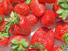 Stock Photo of Strawberries