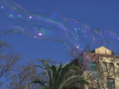 Soap bubbles in the city, slow motion shot at 240fps Stock Footage