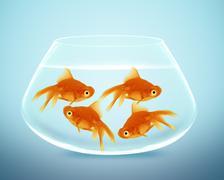 Goldfish in small bowl Stock Photos