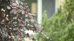 Rain in slow motion. raining background. rainy day. wet weather. season Stock Footage