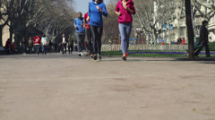 People jogging in park, slow motion shot at 60fps, steadycam shot Stock Footage
