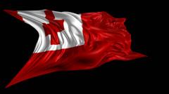 Flag of Tonga Stock Footage