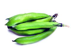 Bunch of broad beans Stock Photos