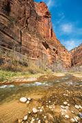 Zion virgin river clear waters. zion national park, utah, usa. Stock Photos