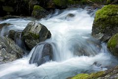 small mountain river closeup. north cascades national park, washington, usa. - stock photo