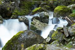 cascade mountains mossy creek theme. cascades mountains, washington state, us - stock photo