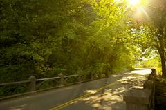 Oregon road -mid summer road along columbia river gorge. bright summer sun be Stock Photos