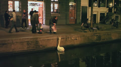 Male proposing a drink can to a swan - stock footage