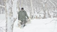 Musher in the Snow.mp4 Stock Footage