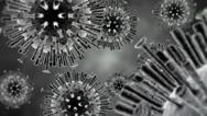 Stock Video Footage of Animated avian flu virus, H5N1.